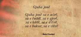 Ja abetaret e gjuhës shqipe, të përpiluara nga hoxhallarët shqiptarë